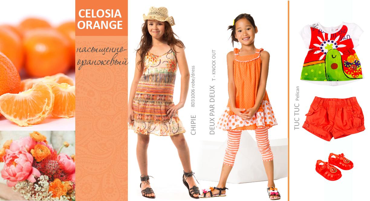 Интернет магазин детской одежды kidslove.me | Детская одежда Catimini, Tuc tuc, Deux par Deux